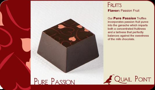 24 Pure Passion